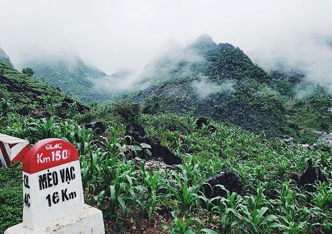 Hành trình của nữ phượt thủ nối liền khoảng cách Sài Gòn - Hà Giang 4