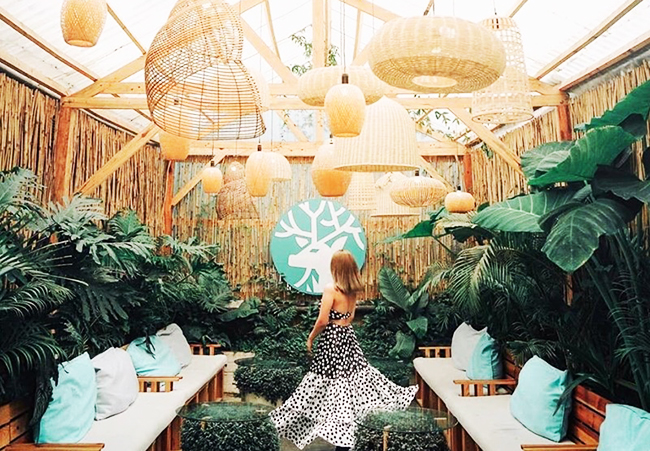 Bỏ túi 60 quán cafe nhất định phải check - in tại Đà Lạt