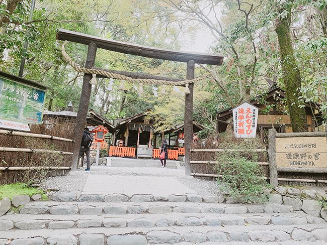 Review du lịch Nhật Bản: Tokyo - Osaka - Kyoto 10 ngày chỉ 16 triệu 6