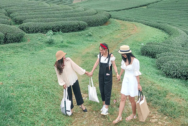 Các địa điểm check in sống ảo ở Mộc Châu
